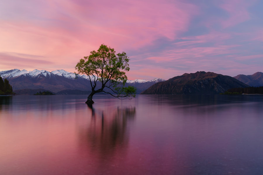 جمال الطبيعة في نيوزيلندا