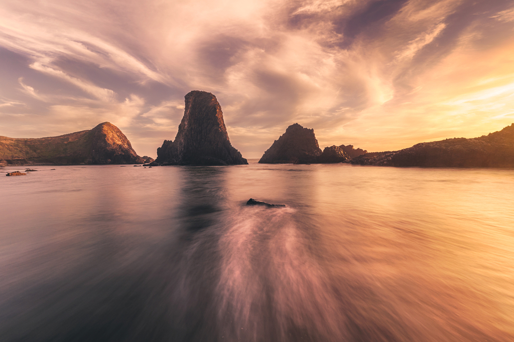 شاطئ Seal Rock